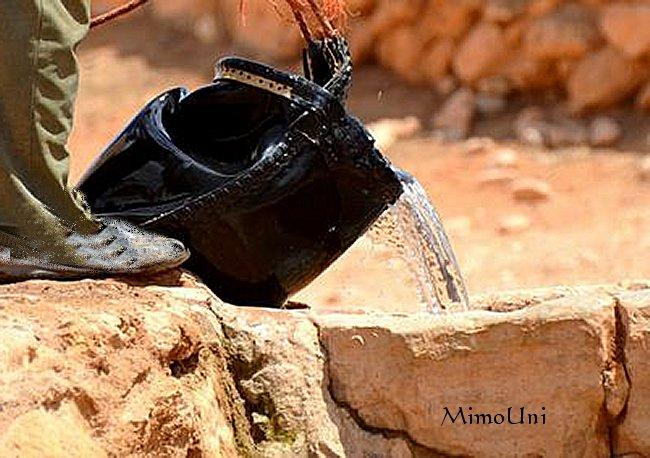 Livre  Photo - Le Passé Agricole d'Ouled Mimoun Delou_10