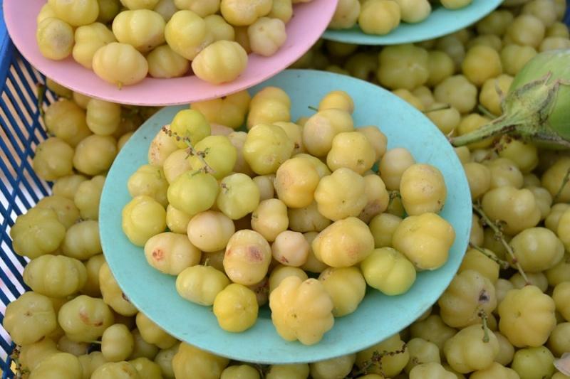 Fleurs,....fruit,.....tout ce qui se mange,...se boit....ou qui vient de la nature.......... - Page 2 Dsc_0010