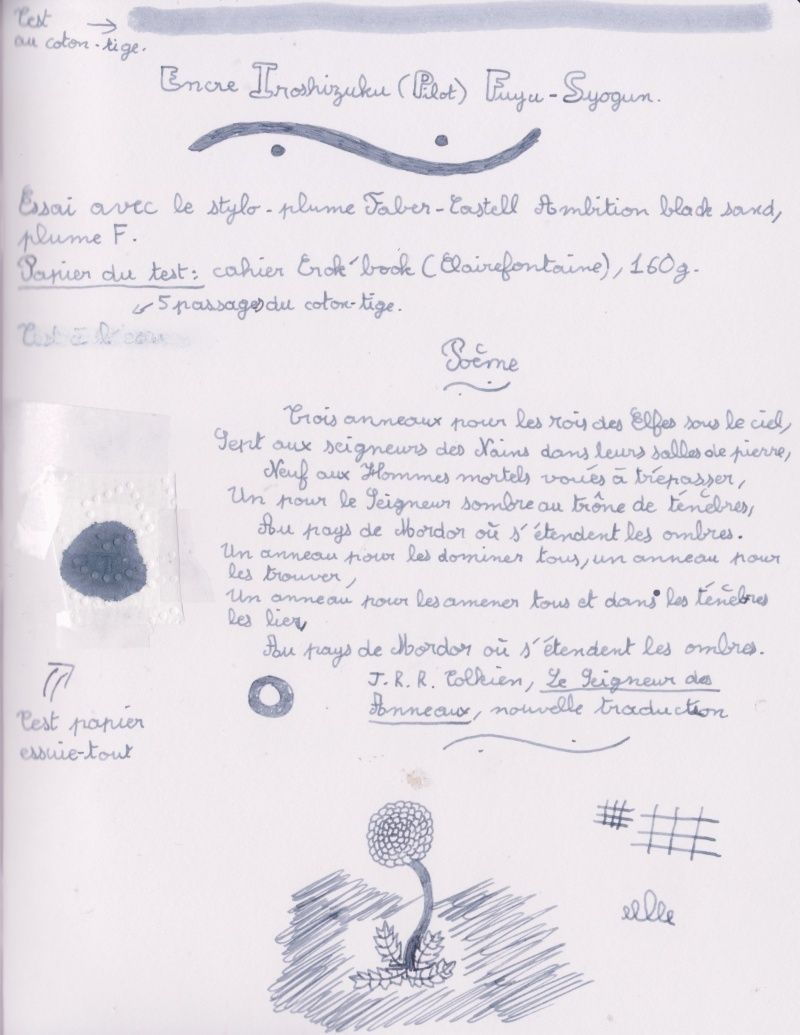 Stylos plume - Page 27 Fuyu-s10
