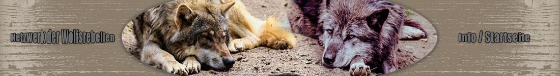 Netzwerk der Wolfsrebellen - Info / Startseite