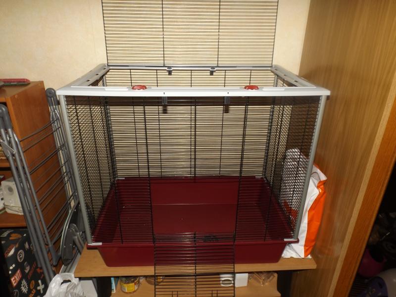 Vend cage furet KD Dscf0810