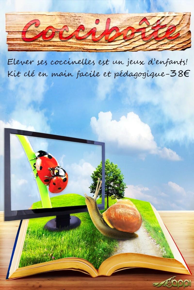 Les Images d'Éle.  Coccib10