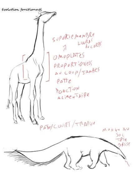 Éle-wip  - Page 6 Evolut11