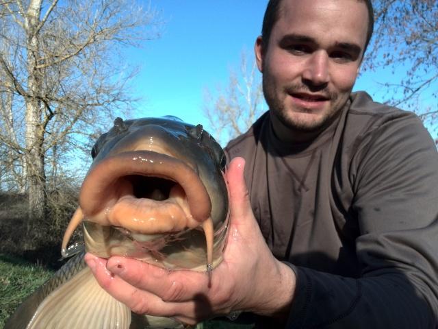 Vos plus jolis poissons (en dehors du poids) Img_2010