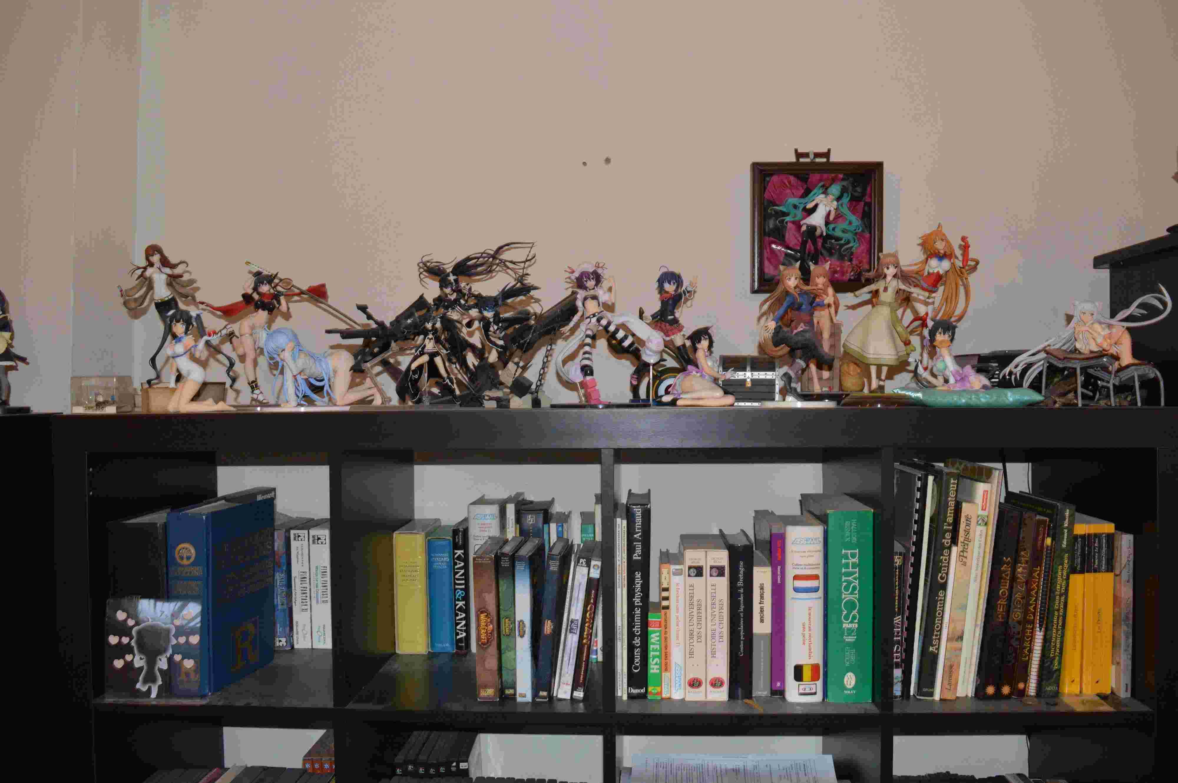 [Galerie] Les quelques figurines qui trainent chez moi Dsc_6116