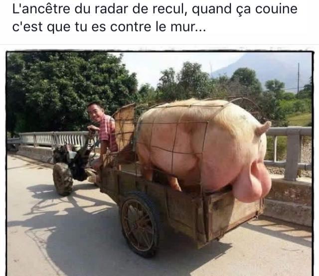 30 raisons de detester la Bretagne - Page 5 12376710