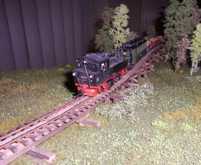 Modellbahn in Schkeuditz Dsci3312