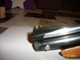 crosman 2300T carabine et 1322 custom Jd531022