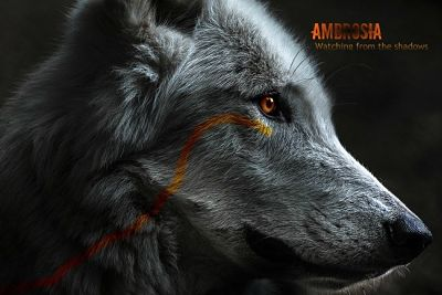 Fading Whispers Memberlist Ambros10