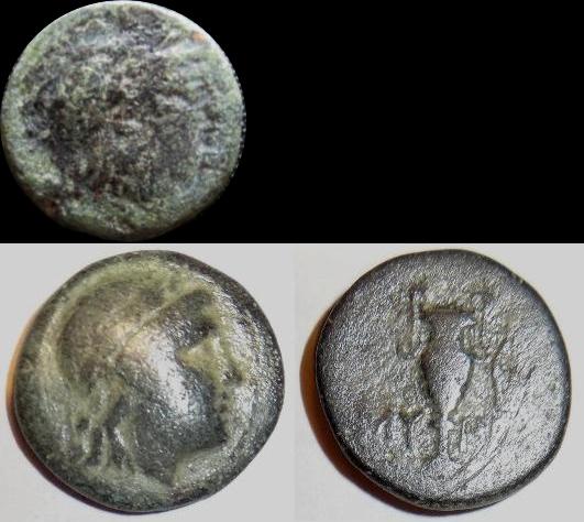 Myrina identification Rene_m10