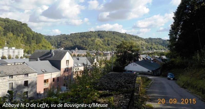 CR du 20/9/15: 146 km pour voir la banlieue de Dinant autrement Dscn2104