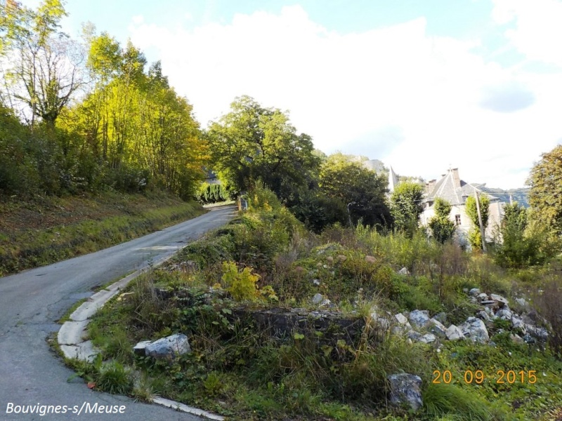 CR du 20/9/15: 146 km pour voir la banlieue de Dinant autrement Dscn2106