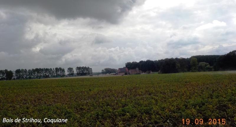 CR du 19/9/15: du Hainaut au Brabant flamand Dscn2179
