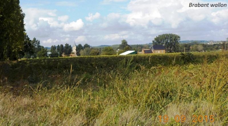 CR du 19/9/15: du Hainaut au Brabant flamand Dscn2190