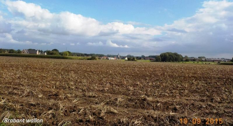 CR du 19/9/15: du Hainaut au Brabant flamand Dscn2191