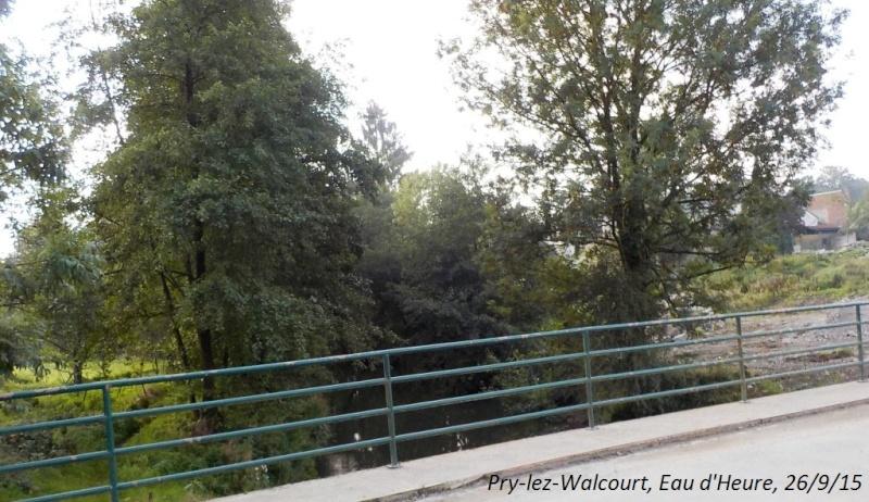 CR du 26/9/15: De Chastrès à Walcourt, 6 km... sauf si on s'égare... Dscn2275