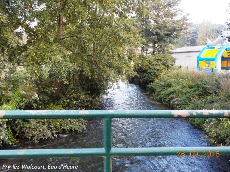 CR du 26/9/15: De Chastrès à Walcourt, 6 km... sauf si on s'égare... Dscn2276