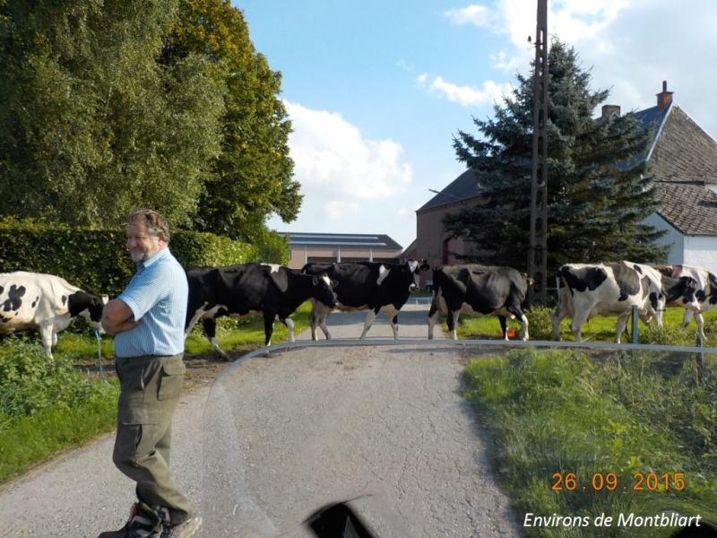 CR du 26/9/15: De Chastrès à Walcourt, 6 km... sauf si on s'égare... Dscn2365