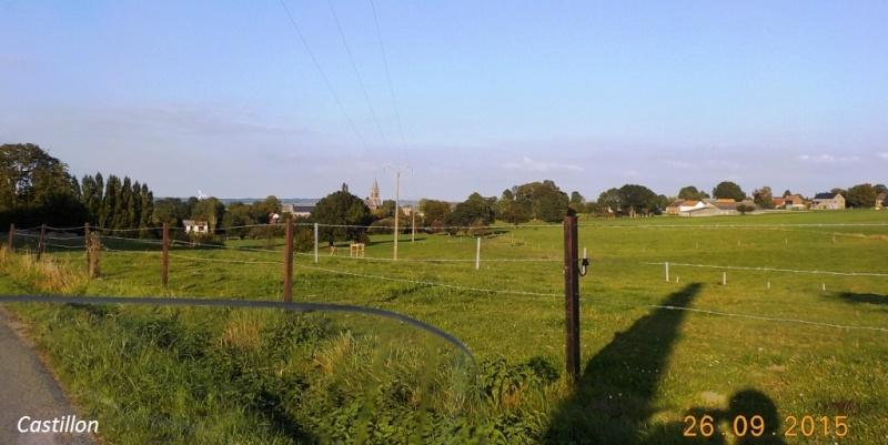 CR du 26/9/15: De Chastrès à Walcourt, 6 km... sauf si on s'égare... Dscn2386