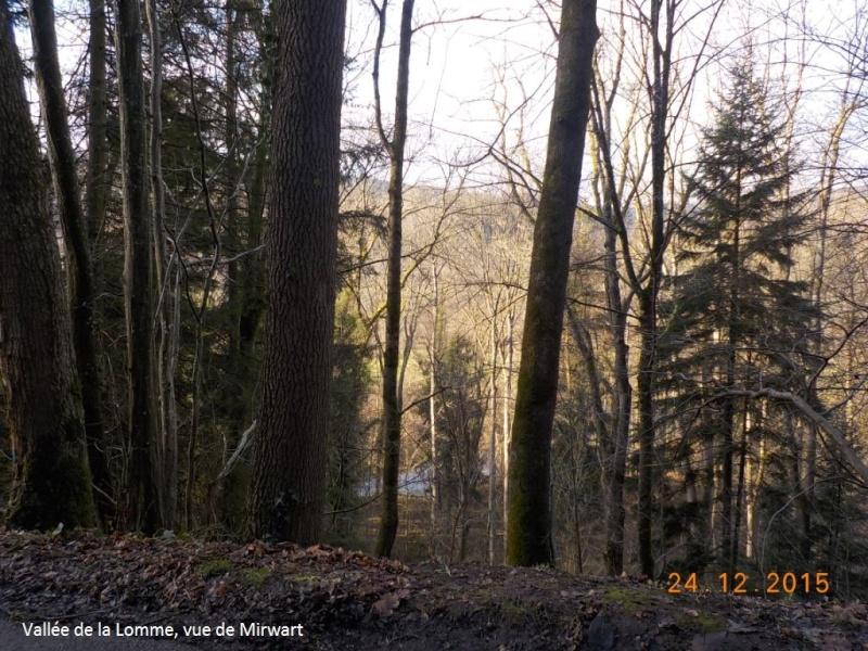 Un petit 41 km en guise d'apéro avant le Réveillon du 24/12/15 Dscn3049