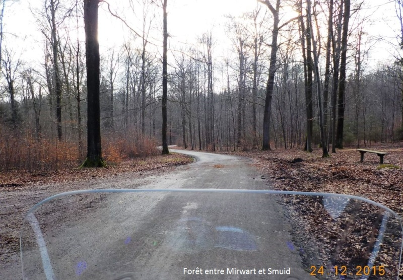 Un petit 41 km en guise d'apéro avant le Réveillon du 24/12/15 Dscn3055