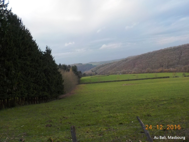 Un petit 41 km en guise d'apéro avant le Réveillon du 24/12/15 Dscn3087