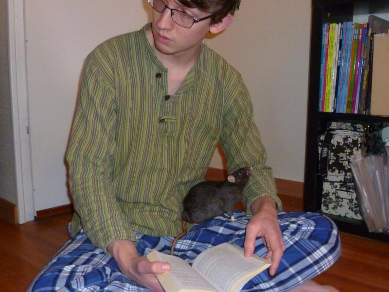 Ma joyeuse bande de petits hobbits joufflus (et poilus !) - Page 12 P1140236