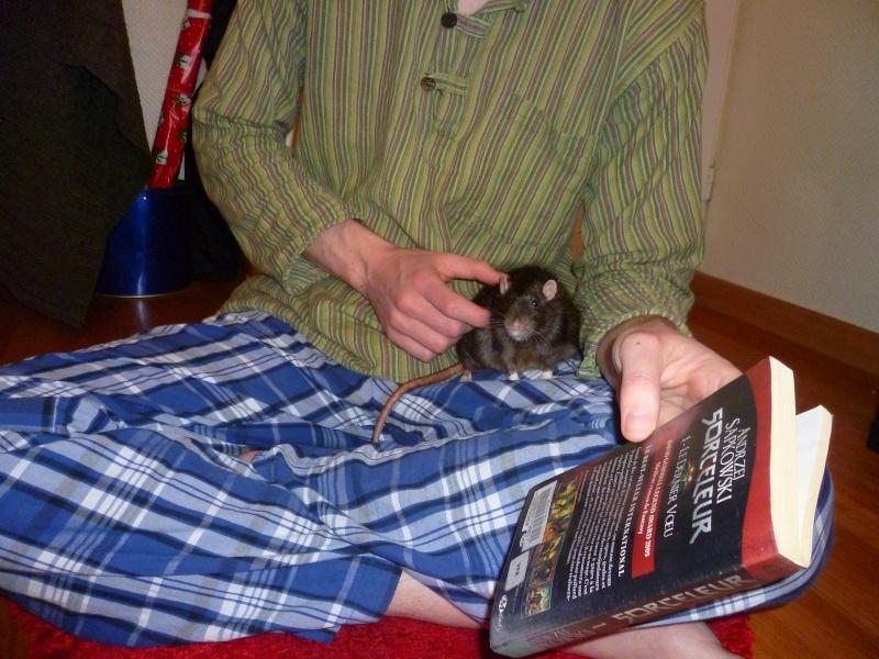 Ma joyeuse bande de petits hobbits joufflus (et poilus !) - Page 12 P1140237