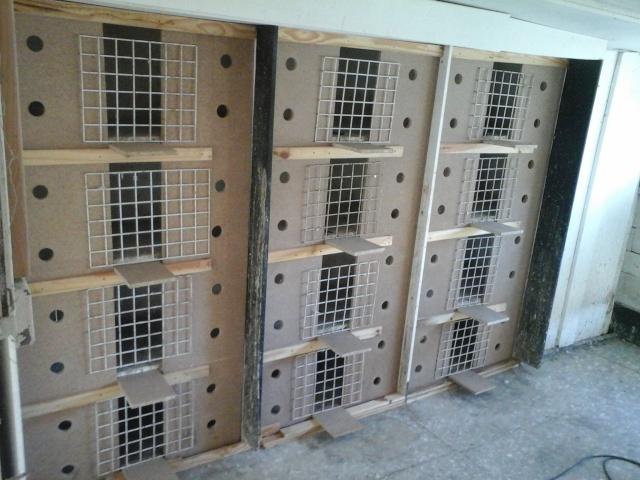 renovation de mes cases d'elevage 20151219