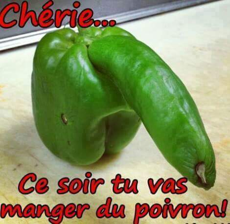 humour - Page 4 11986510