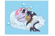 La passeggiata degli squali - Lunedì 4 gennaio 2016, dalle ore 19:45 alle ore 20:30 Im410