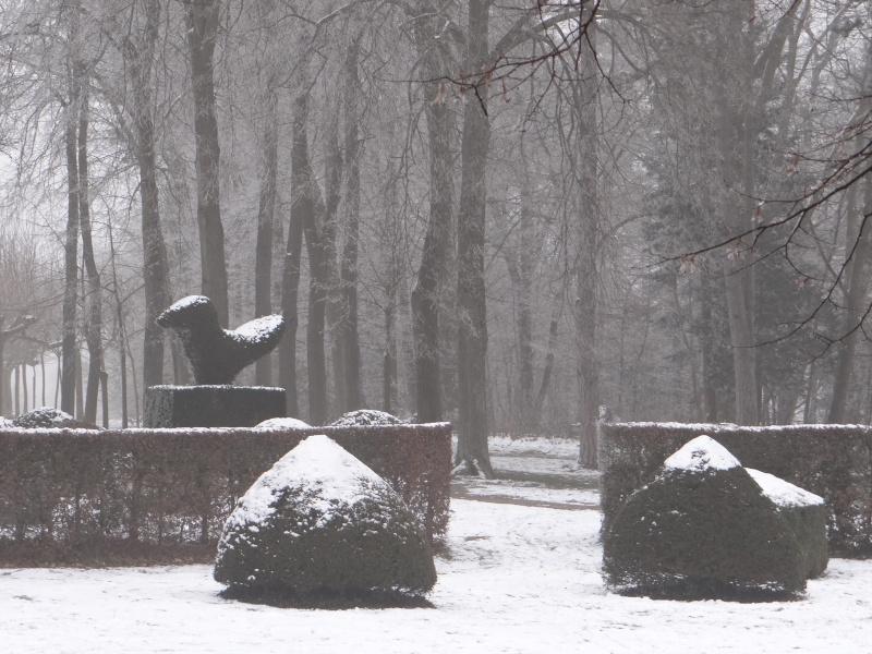 balade hivernale.  Dsc01311