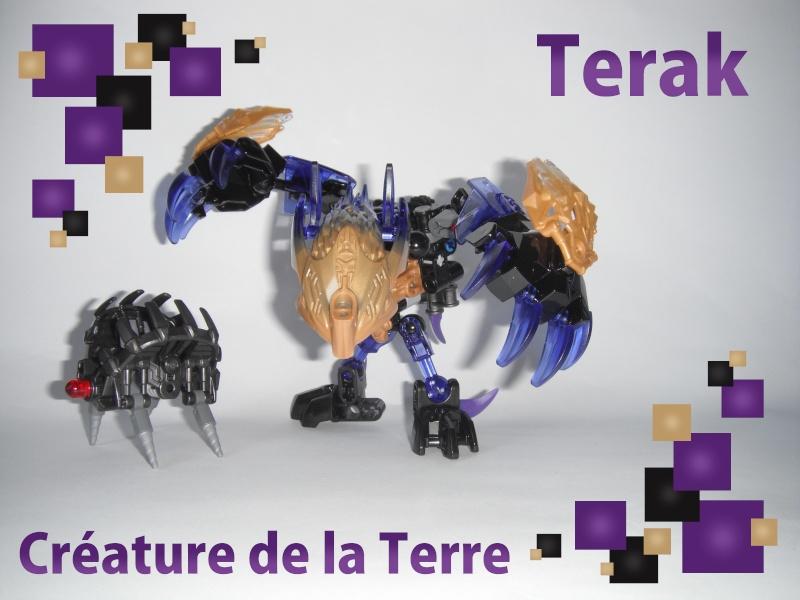 [Revue] BIONICLE 71304 : Terak, Créature de la Terre Dscf3110