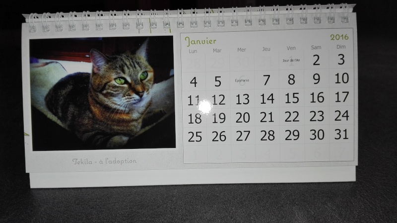calendriers Img_2011