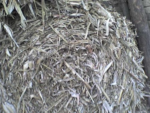 Baliranje kukuruzovine rolo  bale 118