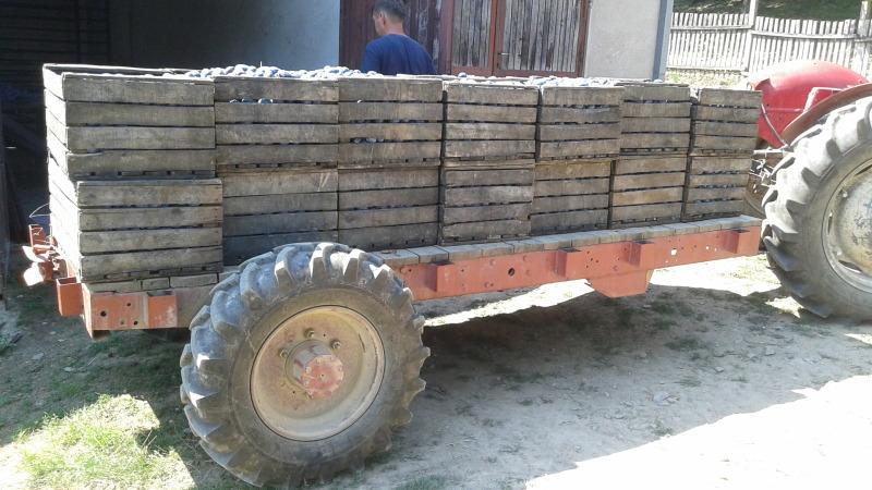 Ručni rad pogonska prikolica za šumarstvo 1z4fz910