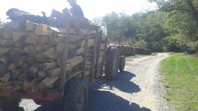 Ručni rad pogonska prikolica za šumarstvo 2vi5xd10