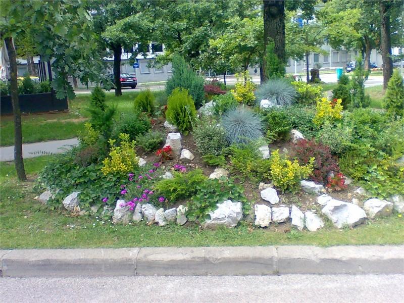 Vrtne biljke                        Image026