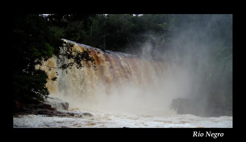 Aquarium 96 L biotope Amazonien Rio Negro - Page 2 Rio_ne11