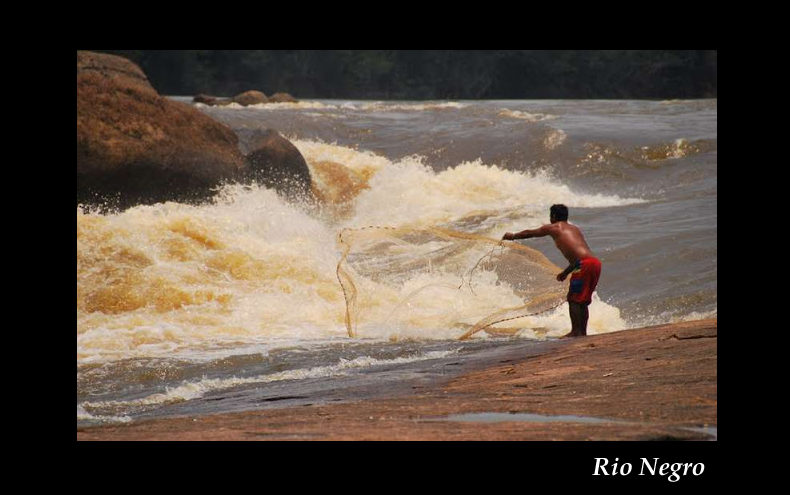 Aquarium 96 L biotope Amazonien Rio Negro - Page 2 Rio_ne14