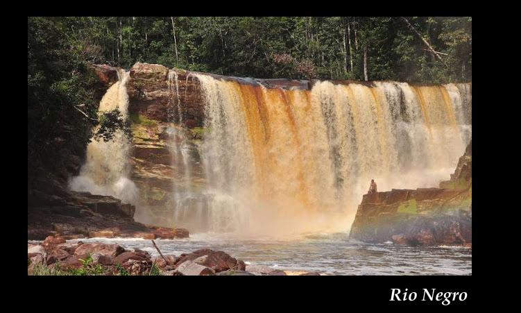 Aquarium 96 L biotope Amazonien Rio Negro - Page 2 Rio_ne15