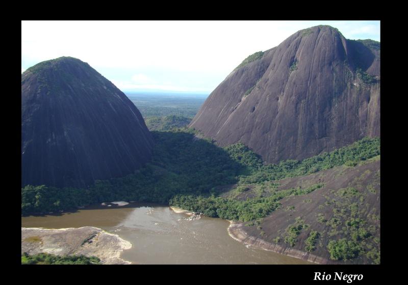 Aquarium 96 L biotope Amazonien Rio Negro - Page 2 Rio_ne16