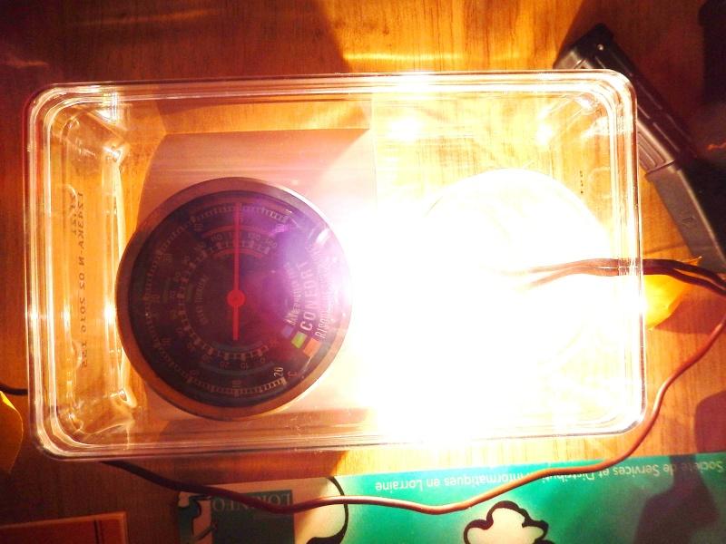 Montage ampoules LED 21/5 W feux de jour Opel Mokka - Page 5 Dscn2715