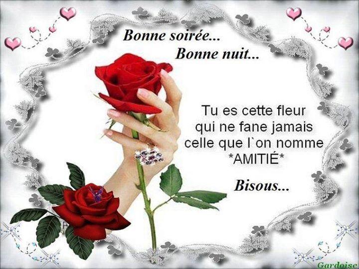 LES BONSOIRS DU SOIR  - Page 6 13817110