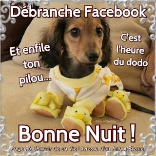 LES BONSOIRS DU SOIR  - Page 5 Bonne-10