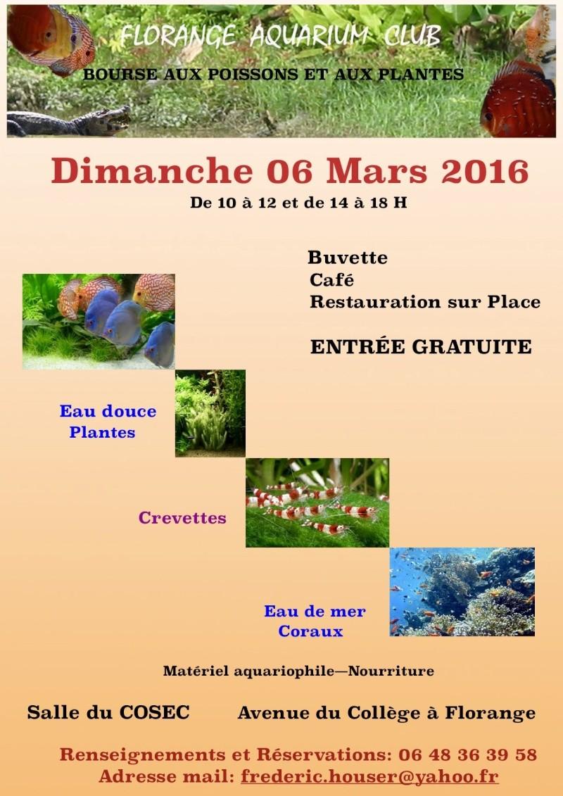 Bourse Florange 6 mars 2016 Affich10