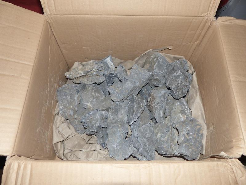 Mini-Rocheuses : Partie V - Rédemption  P1030412