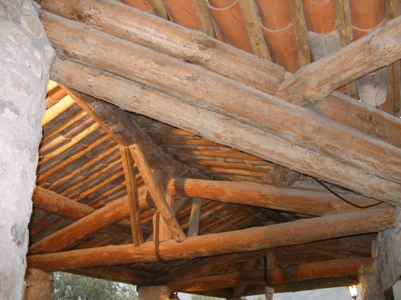[FIL OUVERT] le bois sous toutes ses formes P9300610