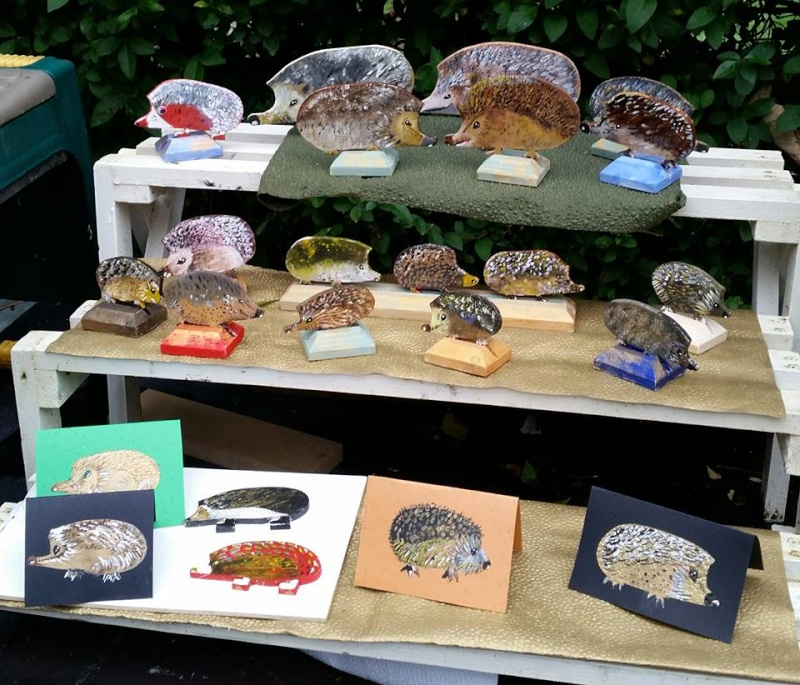 Northwich African Pygmy Hedgehog Show and Craft Fayre 12283111