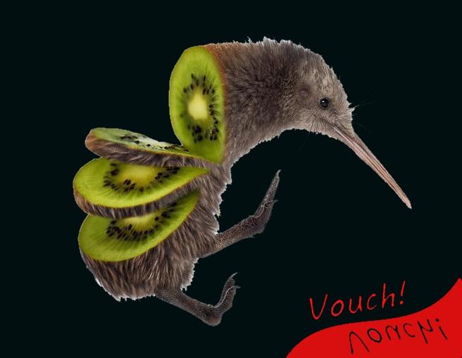 Fluffy's Vet App Vouch12